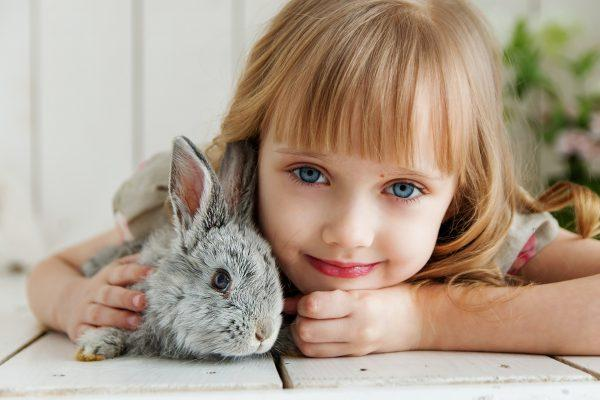 best first pets for kids, best first pets for kids,  why every child should have a pet, pets are kids too
